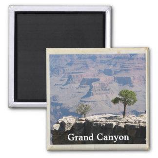 Cooler Grand- Canyonmagnet! Quadratischer Magnet