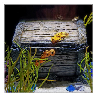 Cooler Unterwasserschatz-Kasten Poster