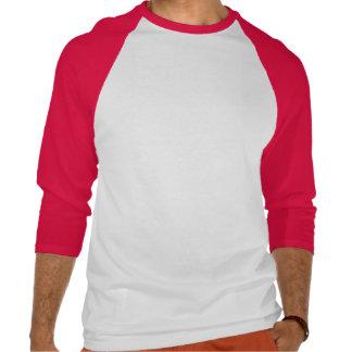 Corey Tiger-80er Vintages Japan steigender Sun T Shirts