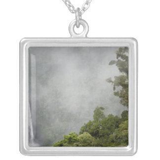 Costa Rica, Wolkenwald in den Bergen nähern sich Versilberte Kette