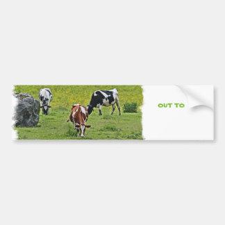 Cows_0068 Autoaufkleber