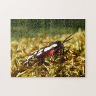 Creme-Stelle Tiger-Motten-Foto-Puzzlespiel mit Puzzle