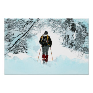 Cross Country durch Snowy-Holz Poster