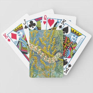 Cucullia Absinthii Raupe Bicycle Spielkarten