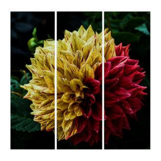 Dahlie-Blume Triptychon