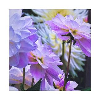 Dahlie-Blumen-Garten an der Dämmerung Leinwanddruck