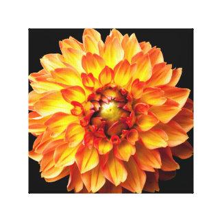 Dahlie-Blumensegeltuch Leinwanddruck