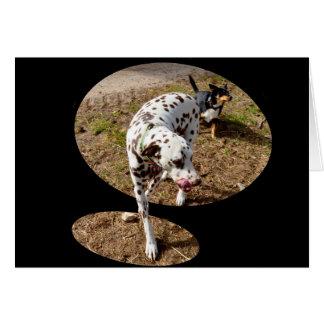 Dalmatiner, der heraus Fenster-tritt, Rahmen, Karte