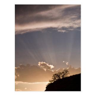 Dämmerige Strahlen strahlen über dem Himmel an aus Postkarte