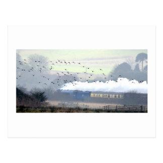 Dampf-Zug durch die Sümpfe Postkarte