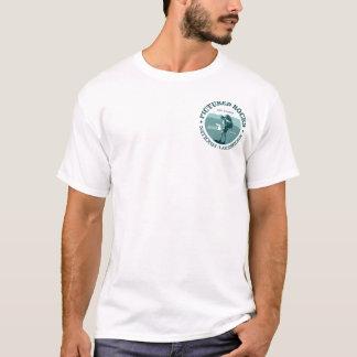 Dargestellte Felsen NP T-Shirt
