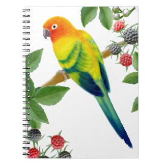 Das alleine Papageien-Notizbuch Sun Conure Spiral Notizblock