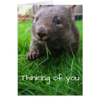 Das Denken an Sie kardieren! Niedliches wombat, Karte