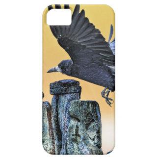 Das Geschenk alter Stonehenge u. Turm iPhone 5 Etui