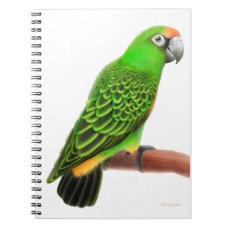 Das Jardines Papageien-Notizbuch Notizblock