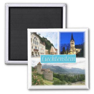 De * Liechtenstein - Vaduz Quadratischer Magnet