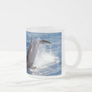 Delphin-Abenteuer Matte Glastasse