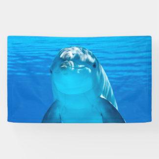 Delphin Banner