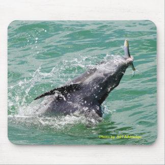 Delphin mit dem Mittagessen Mauspads
