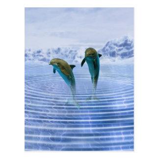 Delphine machen Kräuselungen Postkarten