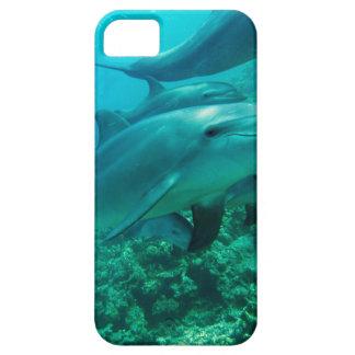 Delphinfisch-Marineozean unter Wasser-Schwimmen Schutzhülle Fürs iPhone 5