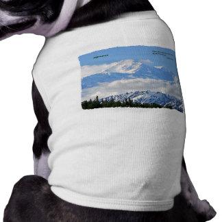 Denali: Mtns sind Nennen/J Muir Shirt