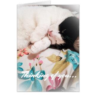 Denken an Sie Katzen-Foto-Karte Grußkarte