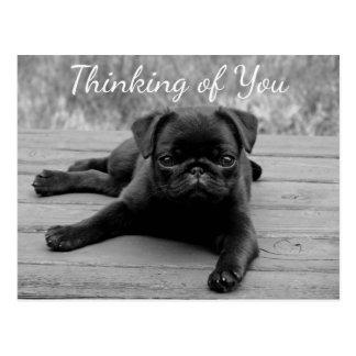 Denken an Sie Mops-Welpen-Hundepostkarte Postkarte