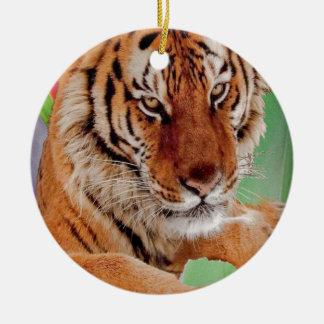 Der bengalische Tiger Rundes Keramik Ornament