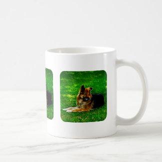 Der beste Freund #1 des Mannes Tasse