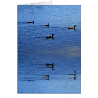 Der Enten-Teich Mitteilungskarte