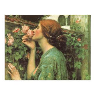 Der Geruch der Rosen Postkarte