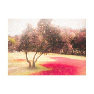 Der Raanana Park 1 Leinwanddruck