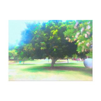 Der Raanana Park 7 Leinwanddruck