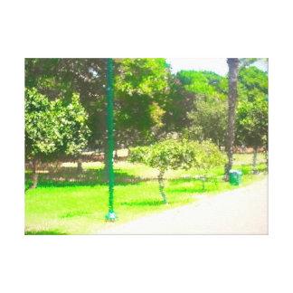 Der Raanana Park 9 Leinwanddruck