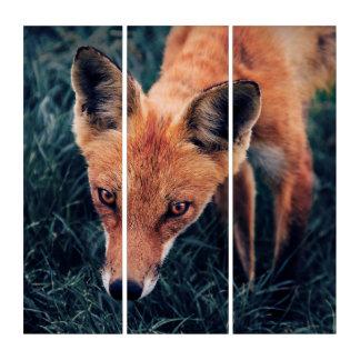 Der rote Fox Triptychon