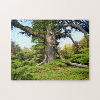 Der Zeder-von-Libanon Baum-Foto-Puzzlespiel mit Foto Puzzles