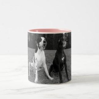 Deutsche Dogge, Great Dane,Hunde,Dogue Allemand Zweifarbige Tasse