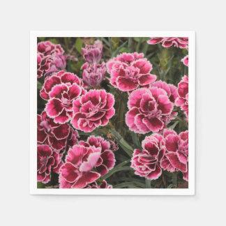 Dianthus Serviette