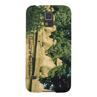 Die Allee der Sphinxes Samsung S5 Cover