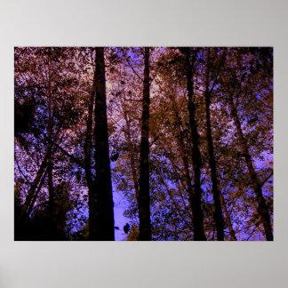 Die Farbe der Natur Poster