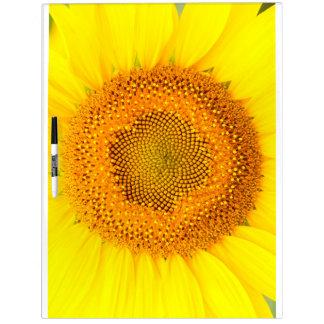 Die große Sonnenblume trocknen Löschen-Brett Trockenlöschtafel