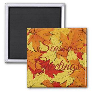Die Gruß-Herbstlaub-Muster-Magnet der Jahreszeit Quadratischer Magnet