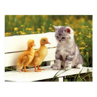 Die hässliche Enten-Postkarte Postkarte