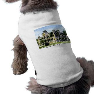 Die Hawaiin Hauptstadt, früher der königliche Pala Ärmelfreies Hunde-Shirt