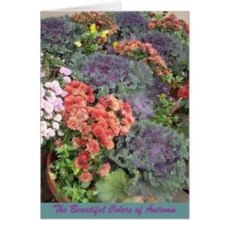 Die schönen Farben des Herbstes Grußkarte