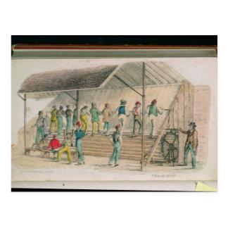 Die Schritt-Mühle Postkarte