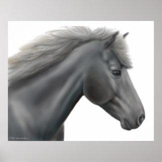 Die Shetlandinseln-Pony-Plakat Poster