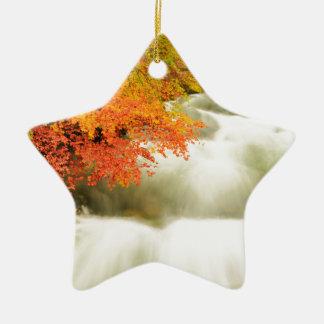 Die Soteska Vintgar Schlucht im Herbst Keramik Stern-Ornament