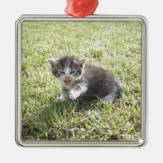 Dieses Kätzchen kämpft für Freiheit Quadratisches Silberfarbenes Ornament